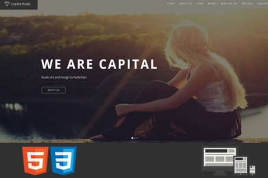 Capital OneMultiPage HTML шаблон