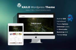 Kailo Wordpress Digital Shop