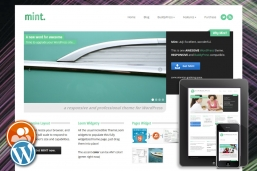 Mint Responsive WordPress шаблон